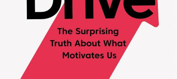 Drive The Surprising Truth About What Motivates Us Ggindiaggindia